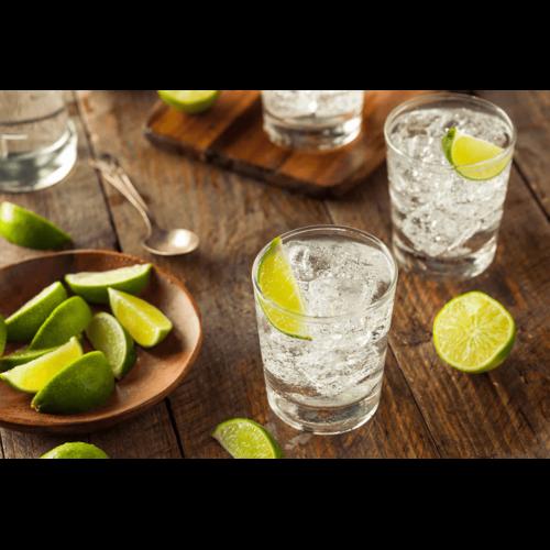 Gin smagning hos Fadandel.dk